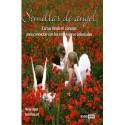 SEMILLAS DE ANGEL (SET DE LIBRO Y CARTAS)
