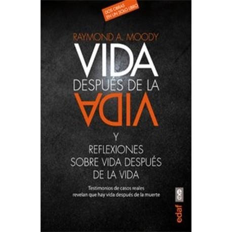 VIDA DESPUES DE LA VIDA Y REFLEXIONES SOBRE LA VIDA