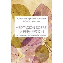 MEDITACION SOBRE LA PERCEPCION