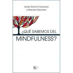 ¿QUÉ SABEMOS DEL MINDFULNESS?